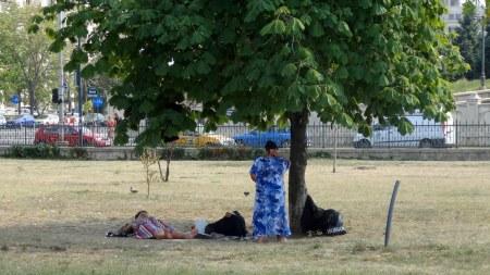 Rumuński piknik