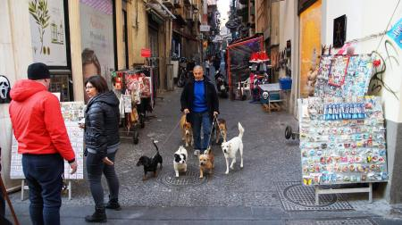 Neapol Centrum fot. Ali
